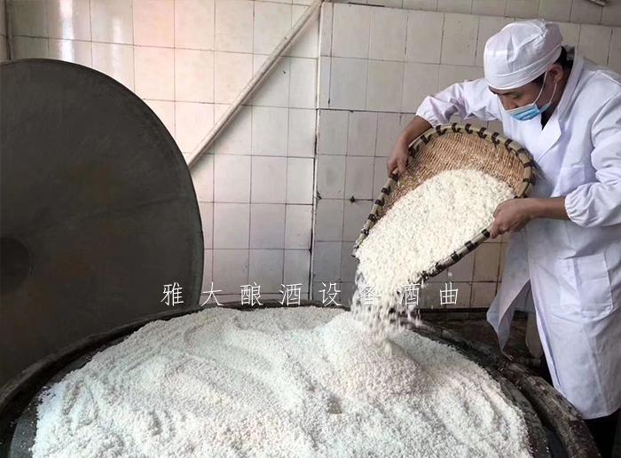 2.6用雅大酿酒设备酿造大米酒