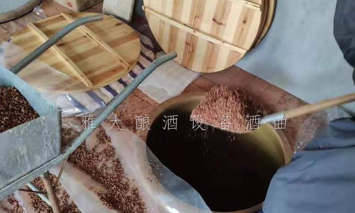 传统固态高粱酒发酵