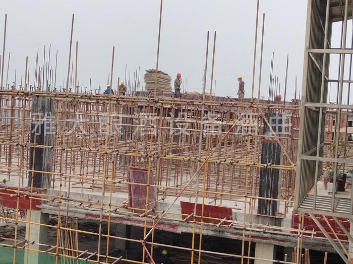 3.6雅大二期在建工程
