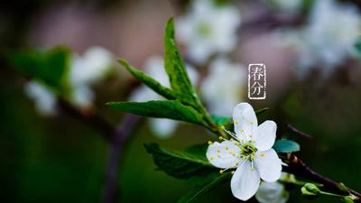 春分时节,粮食与微生物开始了浪漫的恋爱之旅