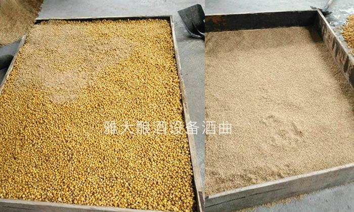 1.2小曲清香型白酒酿酒方法—玉米培菌糖化
