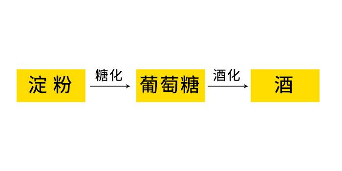 10.18-酿酒发酵基本原理