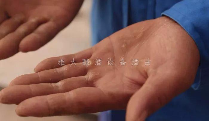10.14酿酒老师傅茧刀手