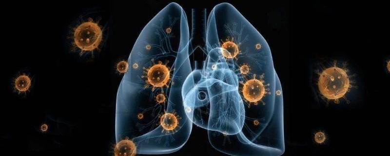2.4新型冠状病毒主要通过呼吸道进入感染