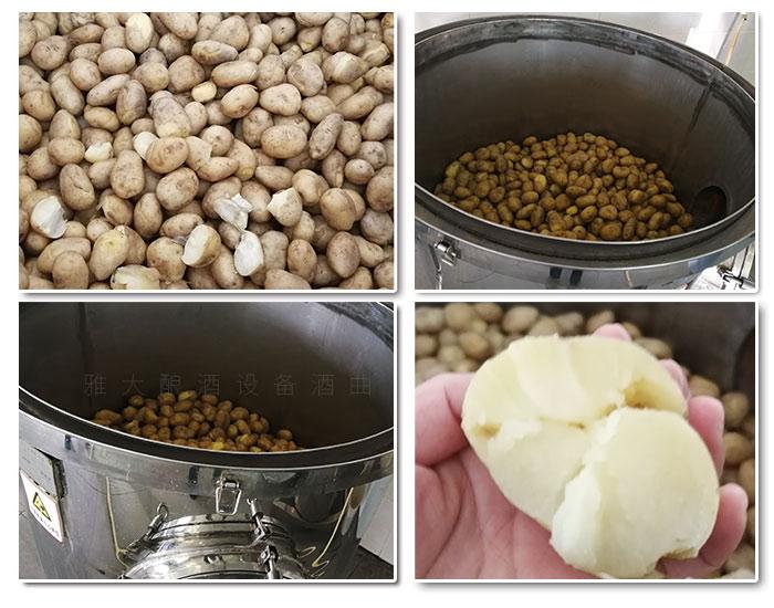 10.3马铃薯酒酿酒工艺-蒸煮