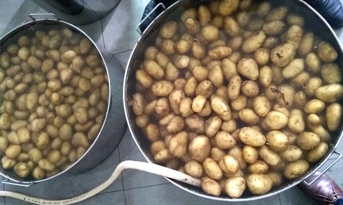 10.3马铃薯酒酿酒工艺-清洗1