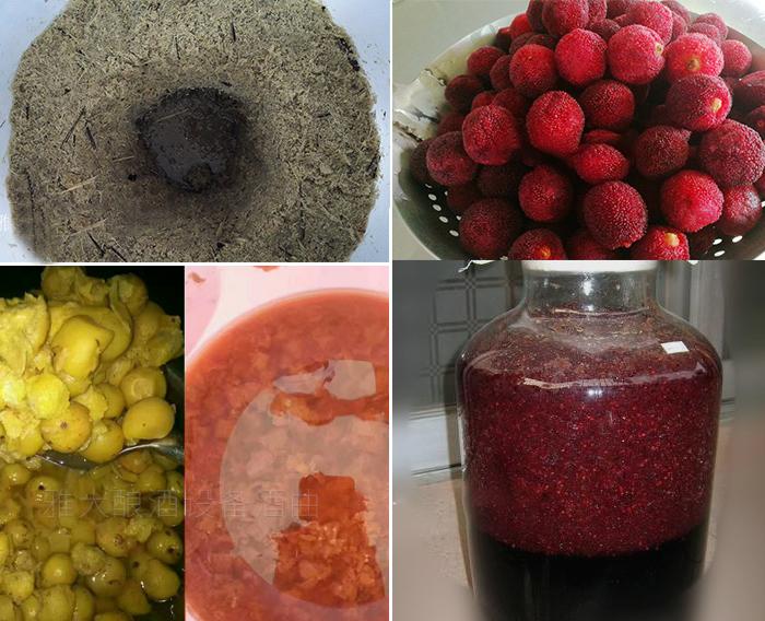 12.29雅大酿酒设备春节教学员酿造的水果酒