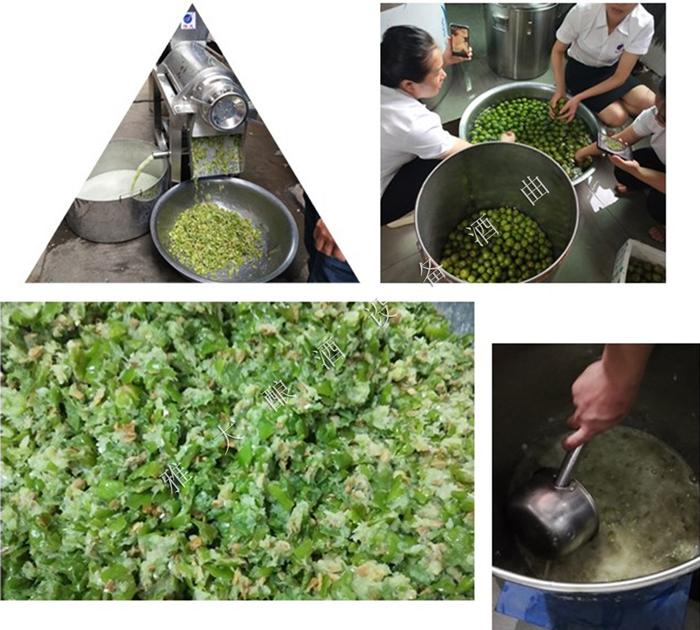 12.29夏季水果酒-奈李酒的研发与酿造