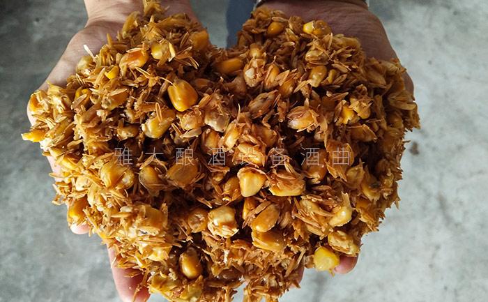3.31整粒固态玉米酒的酿制方-发酵完成