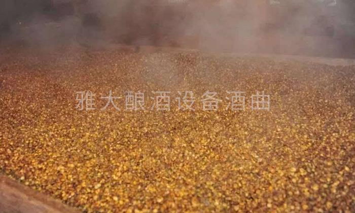 3.31整粒固态玉米酒的酿制方-用摊晾床蒸玉米
