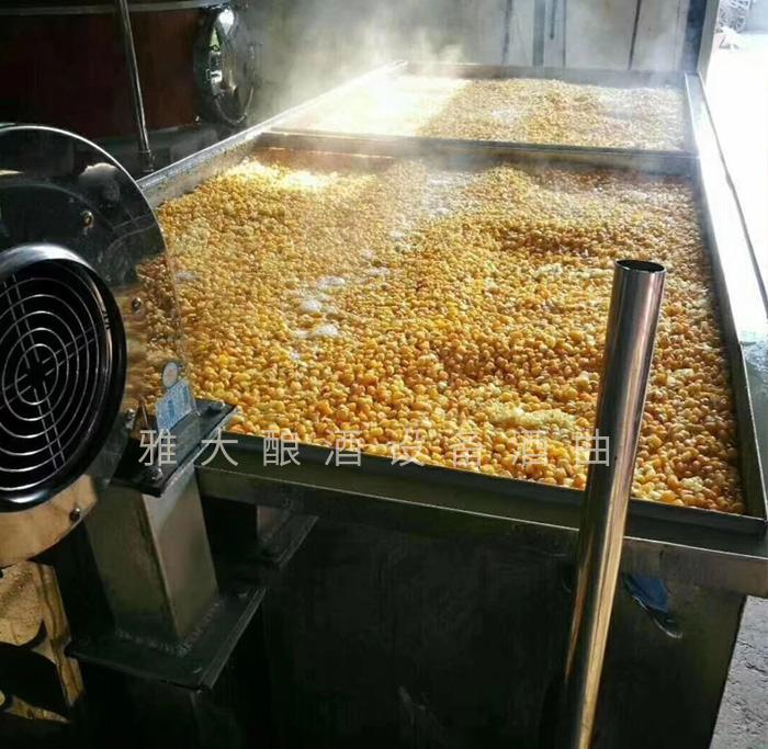 3.31用摊晾蒸煮酿酒设备蒸玉米,熟得又快又均匀