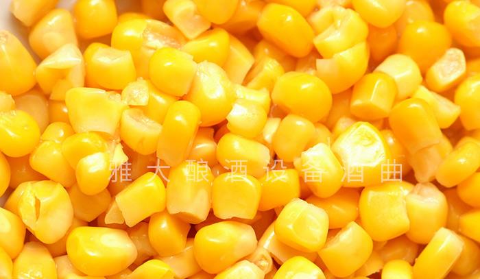 3.31整粒固态玉米酒的酿制方法