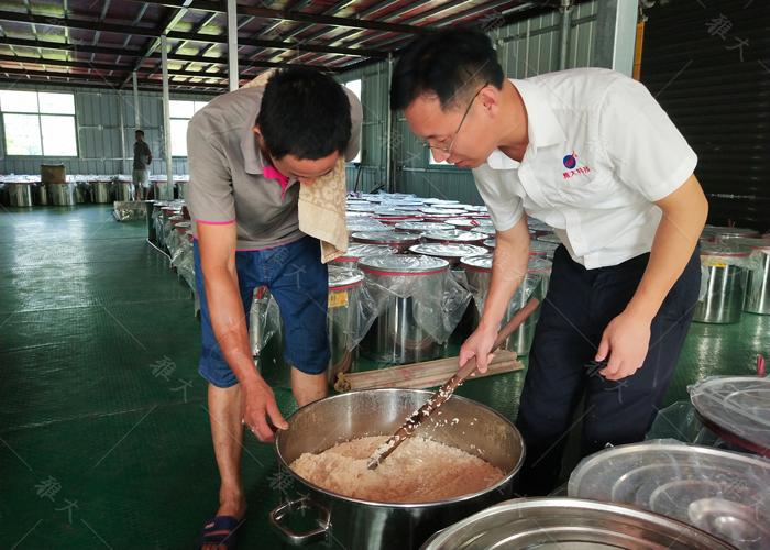 914蒋建明老师上门指导学员酿大米酒