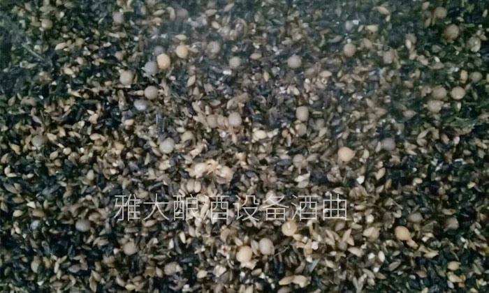 2.10黑大麦酿酒技术—泡粮