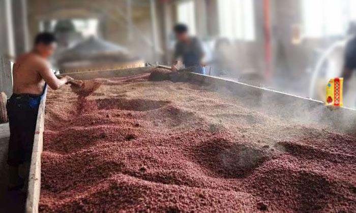 3.30固态高粱酿酒技术