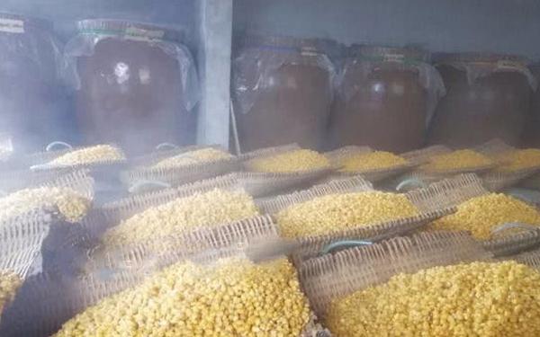 1.27玉米酿酒方法—摊凉