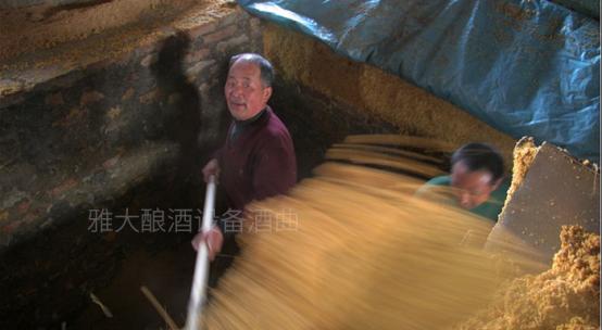 9.17古法玉米酿酒技术-控制入池酸度