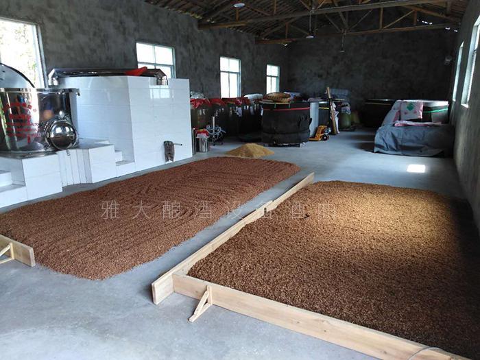 2.8用雅大全自动酿酒设备酿造高粱酒
