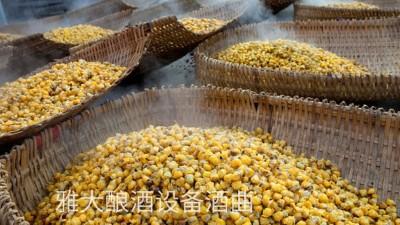 看过来,用玉米酿酒设备制作整料玉米酒的标准教程在这里!