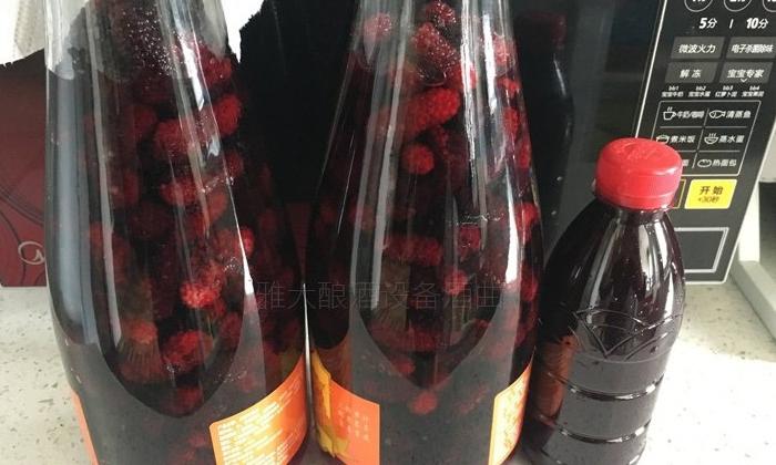2.21桑果酒