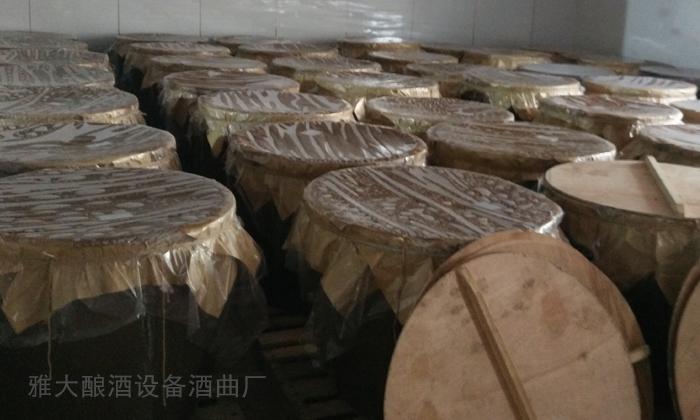 2.9高粱酿酒发酵