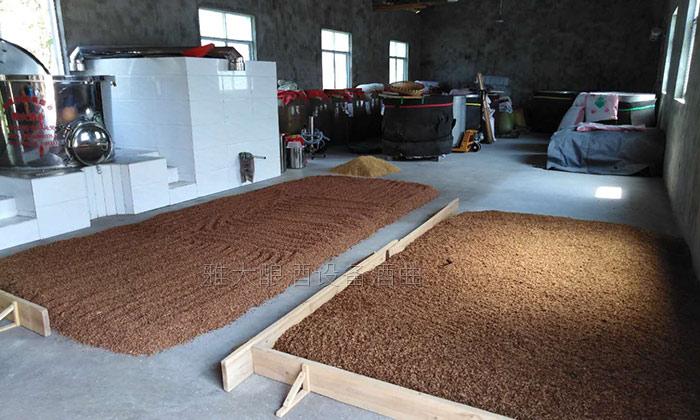 9.12高粱酿酒技术-糖化