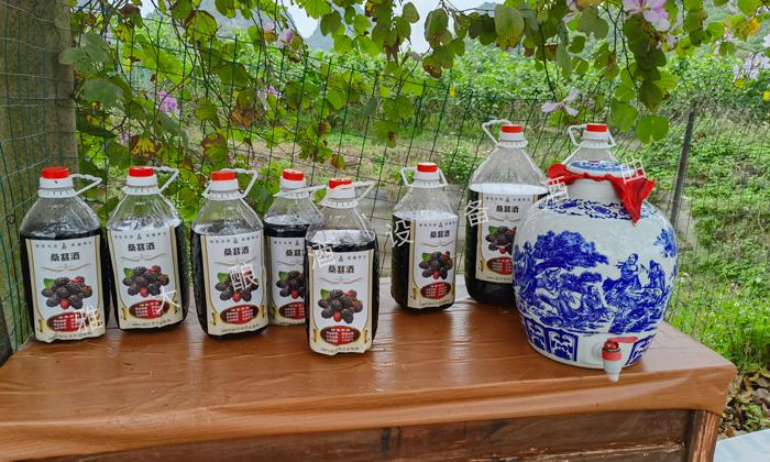 4.10成品桑葚酒