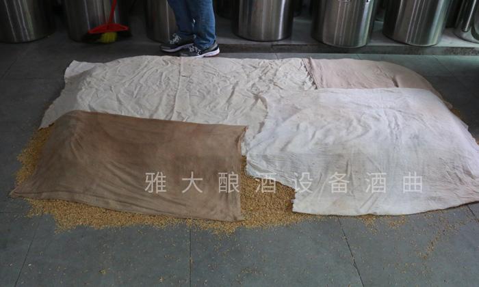 7.24玉米酿酒技术-培菌糖化2