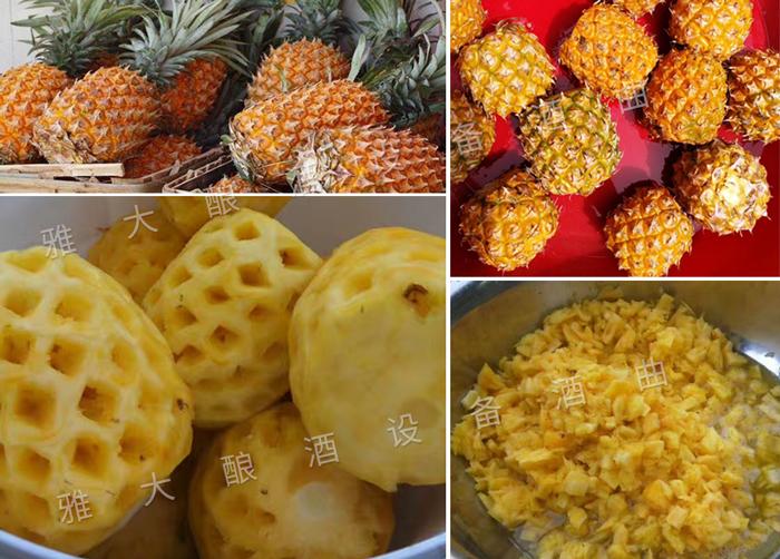 5.4菠萝酿酒技术-原料处理