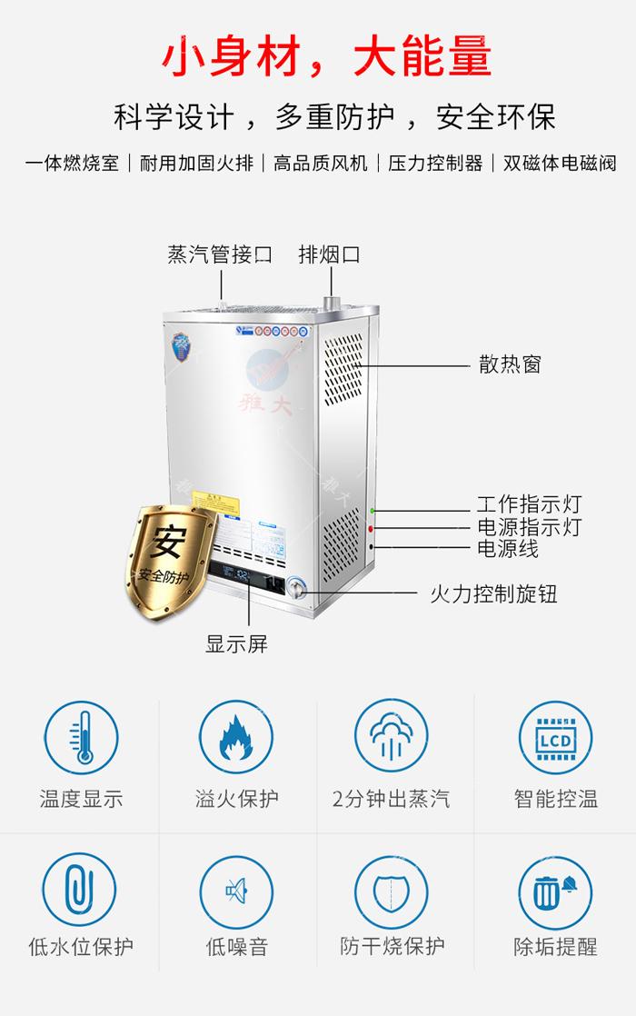 3.10雅大燃气锅炉介绍