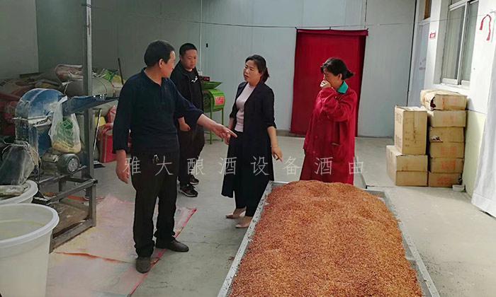 2.26顾客参观玉米发酵全过程