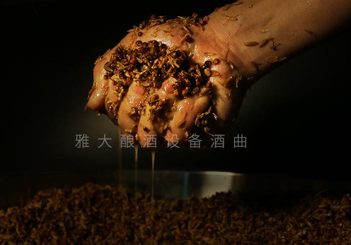 7.3高粱发酵