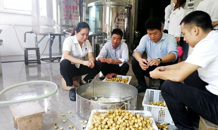 12.24雅大夏季教学员酿造的龙眼酒