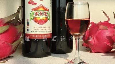 雅大酿酒设备厂家,果酒研发一年四季不打烊