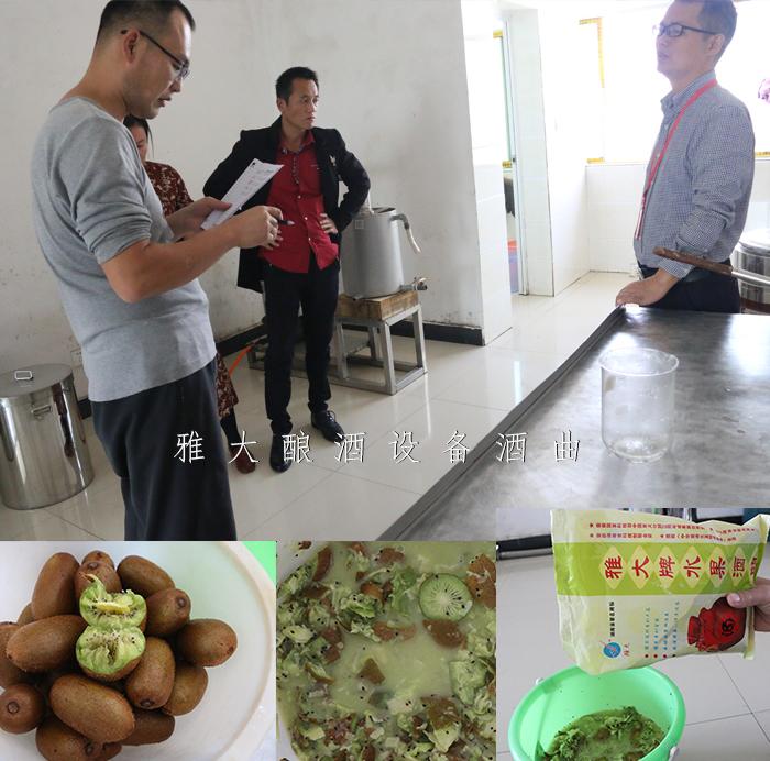 12.24雅大秋季教学员酿造猕猴桃酒