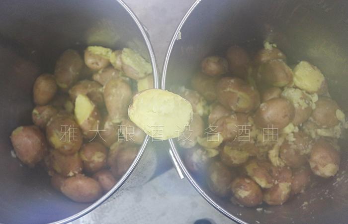 将蒸熟的土豆倒入桶中
