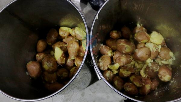 3000吨土豆无人问津,那就试试用酿白酒设备将它们酿成酒吧!
