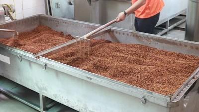 蒸粮时间长,蒸好后总是夹生,试试雅大多功能蒸煮摊凉酿酒设备
