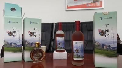 农村到处可见的野果,用小型白酒设备酿成酒被称为男人的加油站!