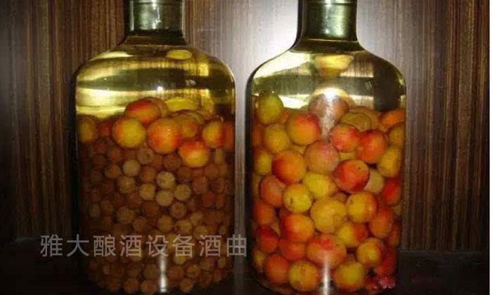4.29「白酒设备」这两天,梅州的李子火了,但将它酿成李子酒会更火02