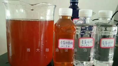 只会青梅泡酒怎么够!青梅发酵酒是怎么酿造出来的?