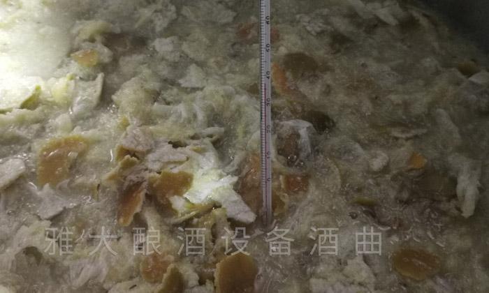 带皮黄帝柑酿酒技术—下曲前测量温度