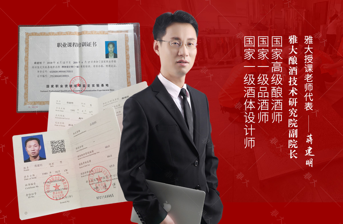 蒋总多功能新型酿酒设备手机 1200