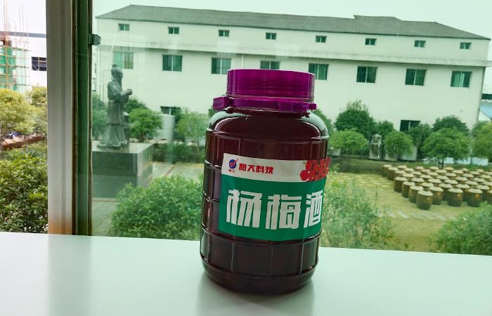 雅大水果泡制酒—杨梅酒