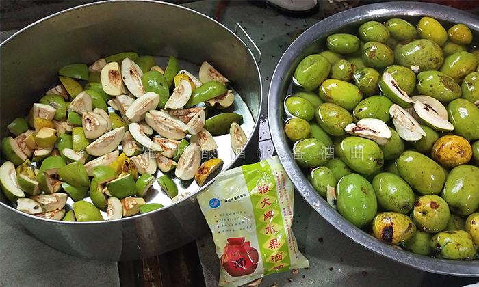 10.16木瓜酿酒技术-原料处理