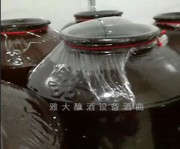 6.30第一批大米酒正在发酵中