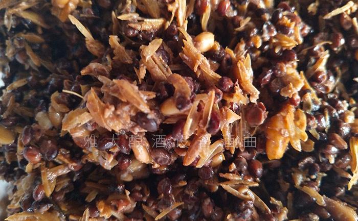 12.4固态酿酒技术——高粱发酵
