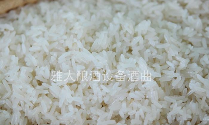 1.8糯米酿酒发酵