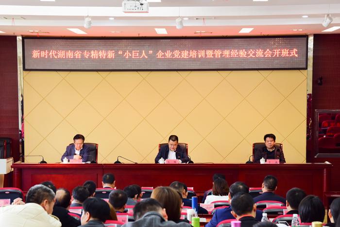 """新时代湖南省专精特新""""小巨人""""企业党建培训"""
