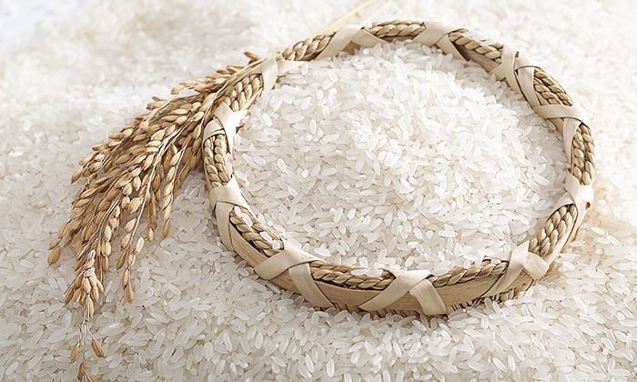 10.6酿造原料大米